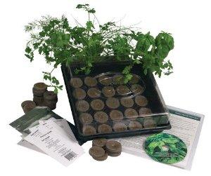 Marvelous Indoor Culinary Herb Garden Starter Kit